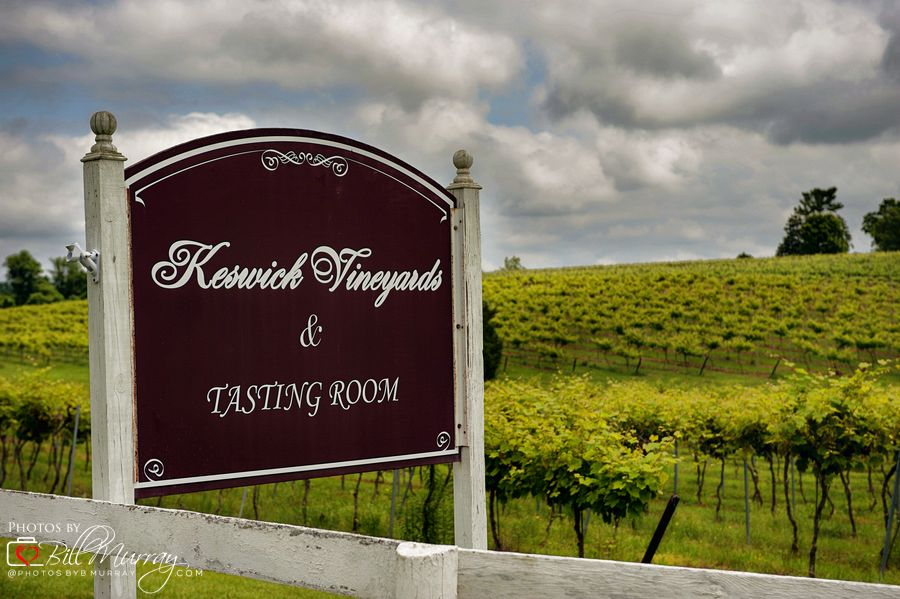at the entrance to the vineyards